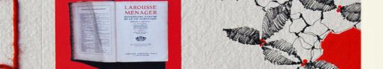 [Chronique] Coco Texedre, L'encyclopédie de la ménagère de plus de 50 ans, par Jean-Paul Gavard-Perret