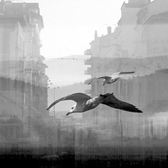 [Chronique] L'œuvre photographique d'Adrienne Arth, par Matthieu Gosztola