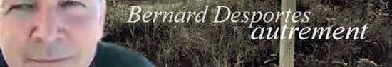 [Chronique] Bernard Desportes, Brève histoire de la poésie par temps de barbarie (Tentative d'autobiographie), par Francis Marcoin