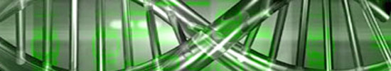 [Texte – 8 et fin] Claude Favre, A.R.N._ Agencement Répétitif Névralgique_ voyou [Dossier : Claude Favre ou la poésie comme langues de guingois]