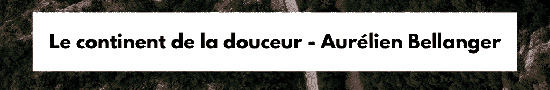 [Chronique] Aurélien Bellanger, Le Continent de la douceur, par Jean-Paul Gavard-Perret